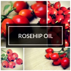 ROSEHIP SEED & FRUIT OIL EXTRACT